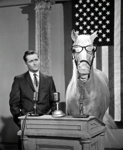 Mr Ed at a press conference
