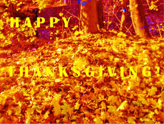 Happy Thanksgiving 04